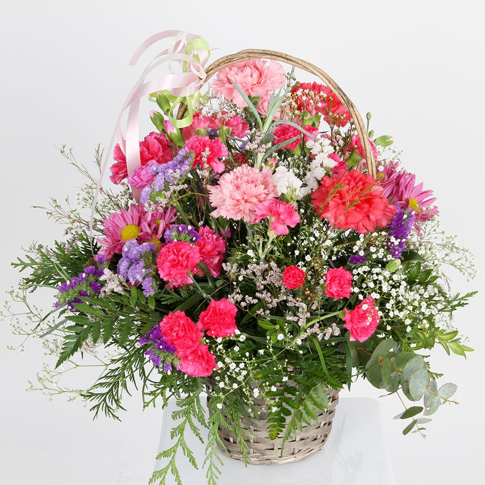 Cesta de claveles de varios colores | Trébol Floristas