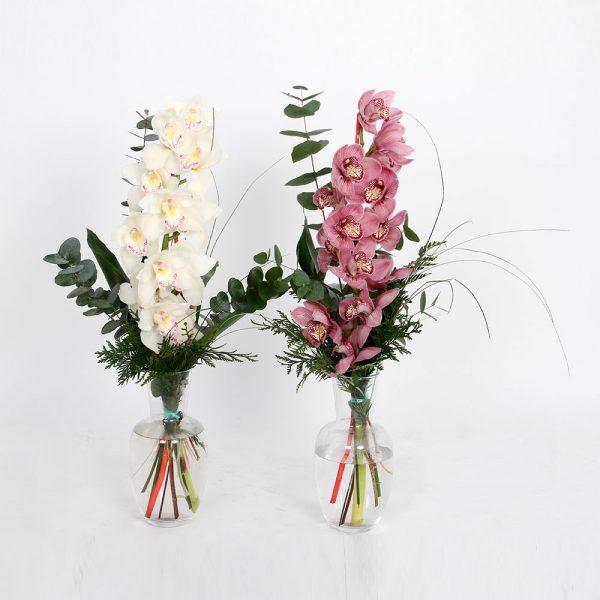 Ramo orquídeas | Trébol Floristas